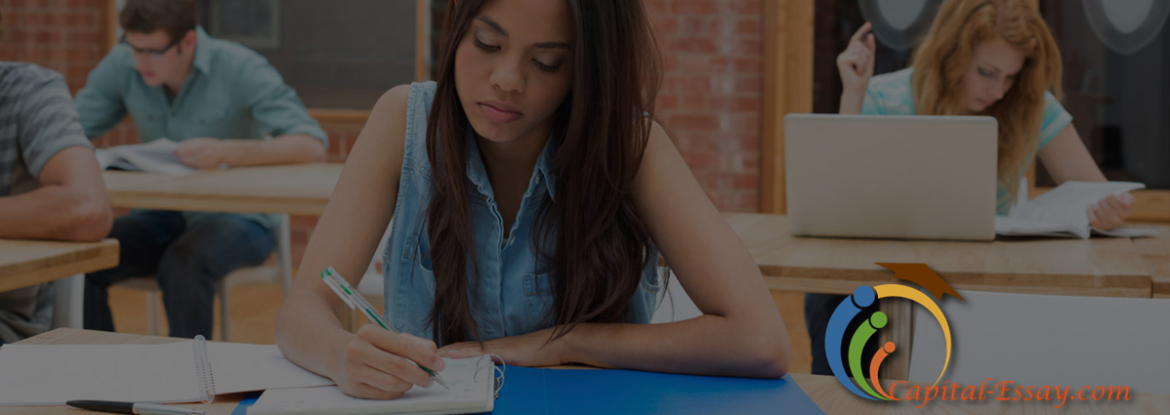 custom essay writing company