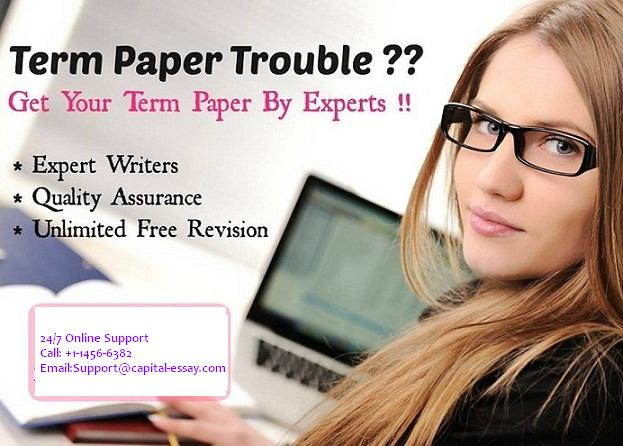 Professional term paper writers team